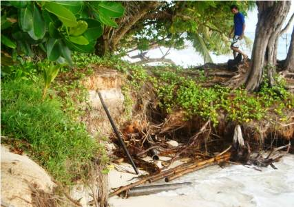 Coastal erosion on Praslin. Seychelles' coastal zone has been affected by several disasters in recent years