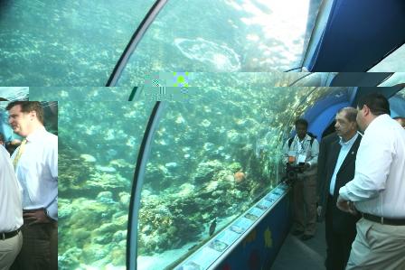 President Michel visiting the Great Barrier Reef aquarium