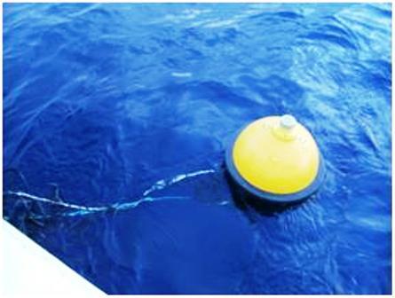 A single buoy FAD