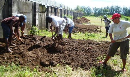 Roche Caiman environmental action team prepares site for coastal garden