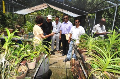 Ms Janker invited Minister Payet and his team to visit her nursery which boasts a variety of palms, succulents and other plants