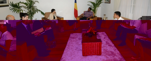 Ms Kobayashi and her delegation at yesterday's meeting with Vice-President Faure