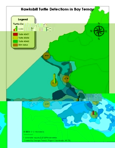 Map showing turtle detections at Bay Ternay