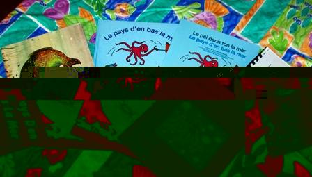 Copies of the children's story book 'Le pays D'en Bas La Mer'