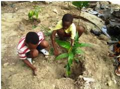 Takamaka school pupils and Lions Club of Paradise members in replanting activity at Anse Marie Louise