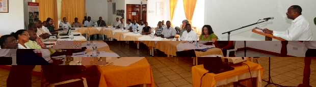 Minister Sinon addressing delegates at the meeting