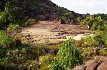 A mosaic of landscapes at Fond Diable, Praslin
