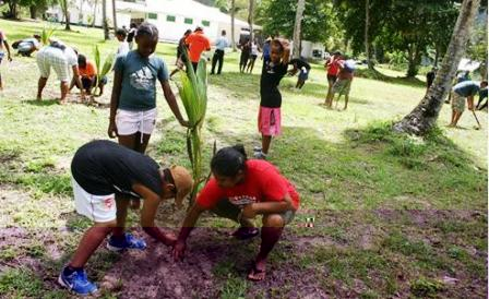 The participants taking part in the tree planting activity