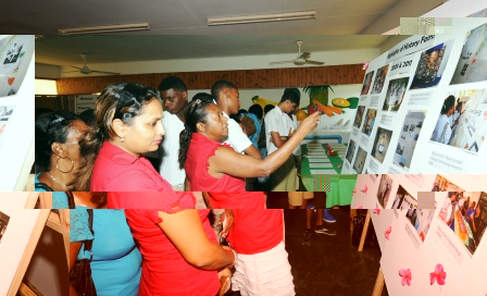 Guests and visitors viewing an exhibition on past history fairs at the launch ceremony on Thursday