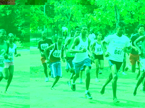 The first race of the cross-country series is today at 3pm