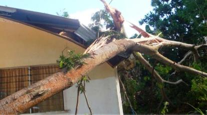 A house's damaged roof at Anse Royale