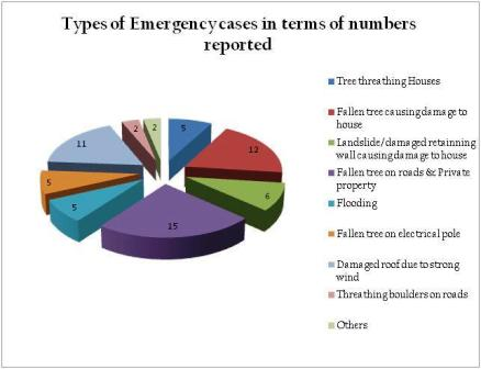 Emergency cases in terms of numbers