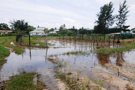 A farm at Au Cap under water following torrential rains
