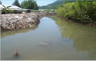 Anse Boileau wetlands restoration